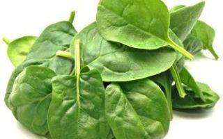 Какие витамины в шпинате: таблица ценных компонентов и противопоказания