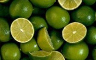 Лайм: польза и вред для здоровья организма