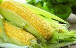Какие витамины в кукурузе и как ее правильно употреблять?