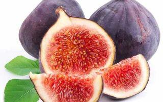 Какие витамины в инжире: полезные свойства, противопоказания и использование