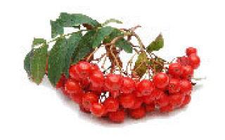 В каких продуктах содержится витамин С и как избежать дефицита?