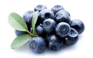 Какие витамины в чернике: польза и вред для организма, норма употребления