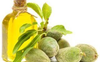 Какие витамины в оливковом масле: названия и количество