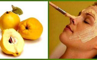 Айва: польза и вред для здоровья организма
