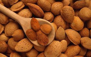 Какие витамины в миндале состав и полезные свойства для здоровья человека