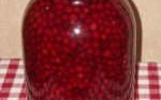 Какие витамины содержатся в бруснике: химический состав и влияние на организм