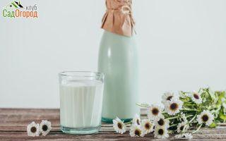 Какие витамины в козьем молоке: польза и вред для организма, показания для употребления