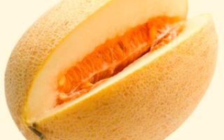 Какие витамины в дыне: состав и полезные свойства