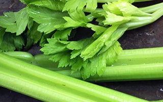 Какие витамины в сельдерее: 10 полезных свойств и противопоказания