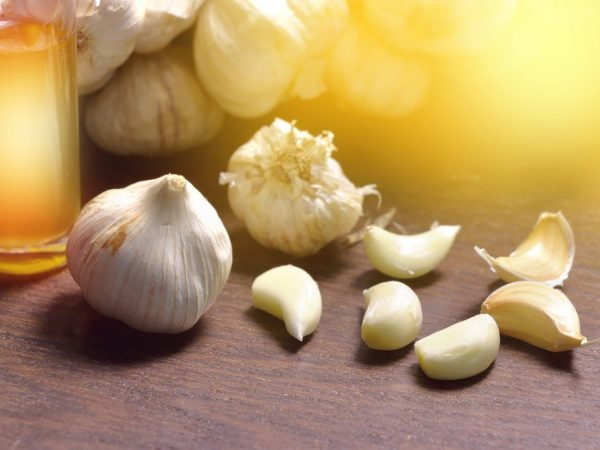 Какие витамины содержатся в чесноке?