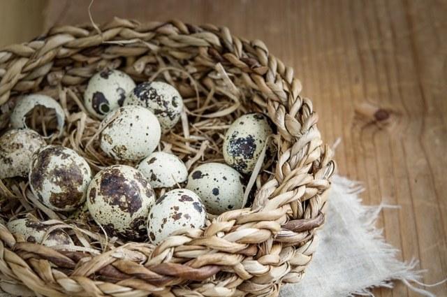 Какие витамины в перепелиных яйцах?