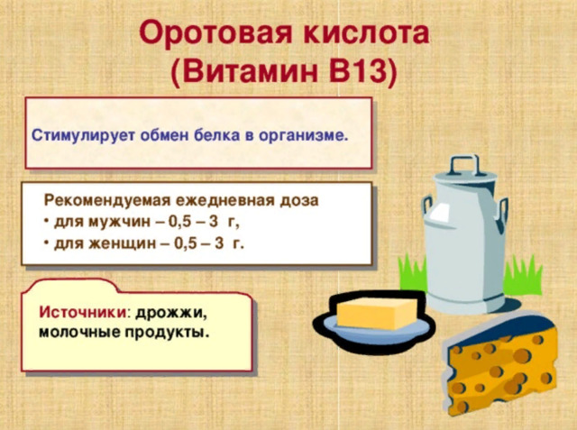 Оротовая кислота (витамин В13): инструкция по применению