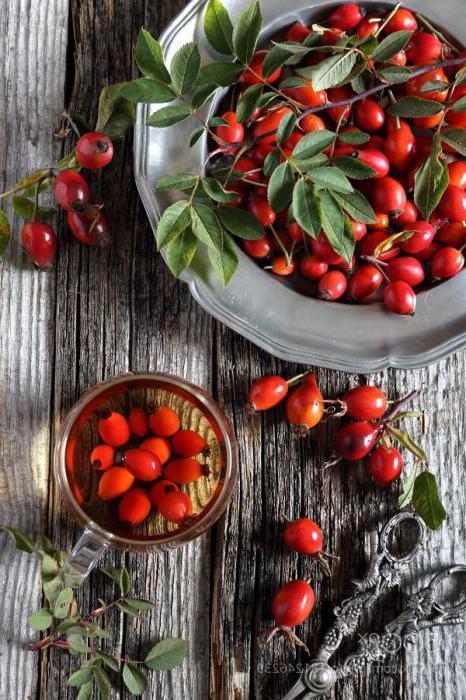 Как правильно заваривать шиповник, чтобы сохранить витамины?