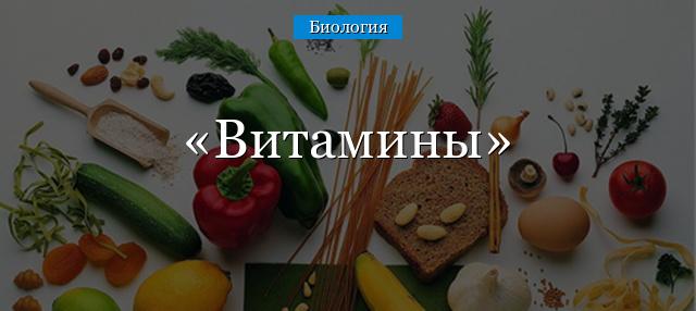 Водорастворимые витамины: свойства, таблица содержания в продуктах