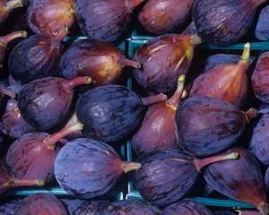 Какие витамины в инжире?