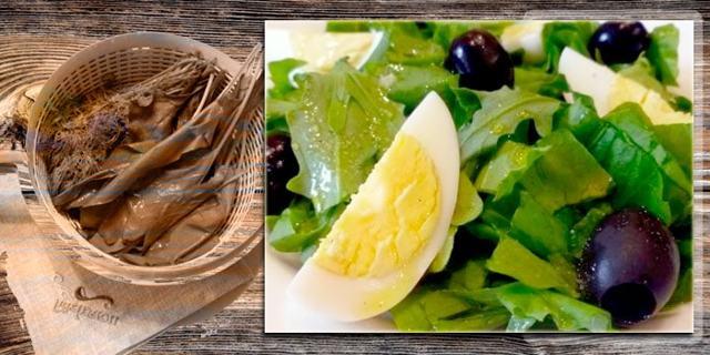 Какие витамины в щавеле?