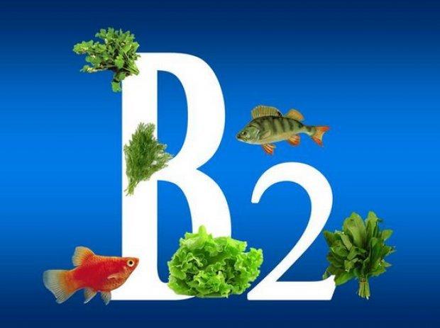 Витамин В2 (Рибофлавин): для чего нужен организму, функции, польза, переизбыток, недостаток, суточная норма
