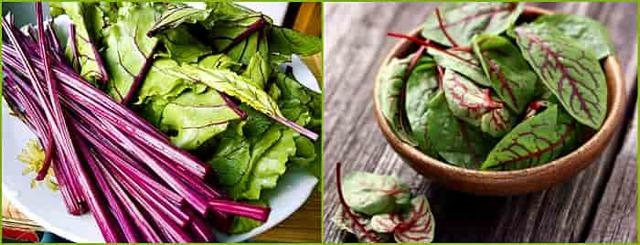 Какие витамины содержатся в свекле (сырой и вареной) и как правильно сварить свеклу чтобы сохранить витамины?
