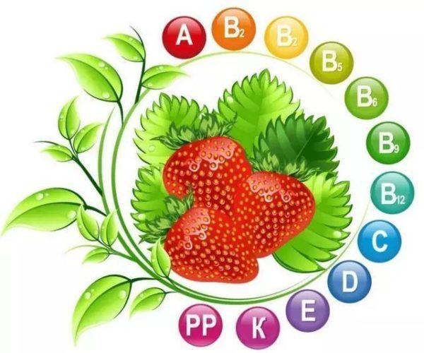 Какие витамины в клубнике?