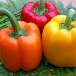 Какие витамины содержатся в болгарском перце?