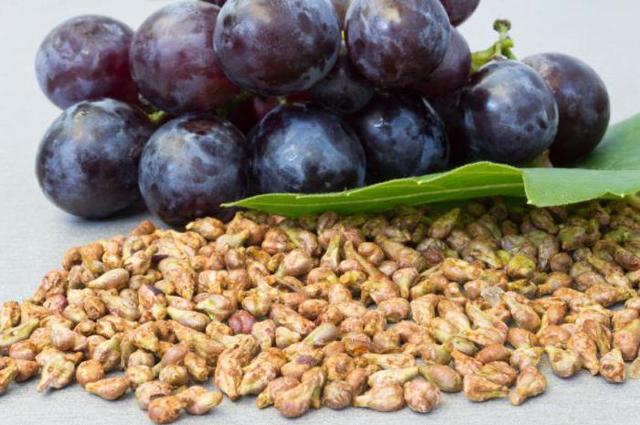 Перфектил Трихолоджик: инструкция по применению, состав витаминов, цена