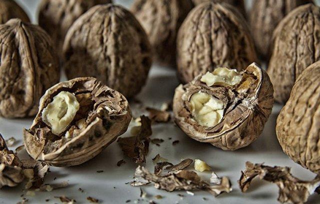 Перегородки грецких орехов: польза и вред