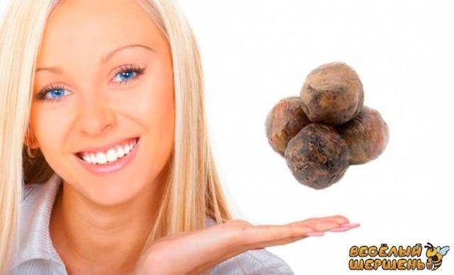 Прополис: польза и вред для здоровья организма