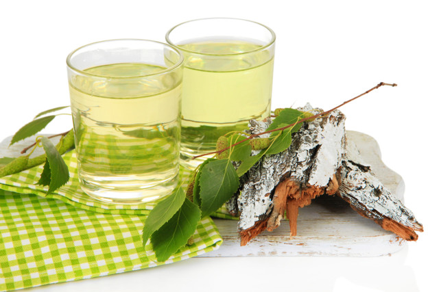 Березовый сок: польза и вред для организма