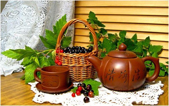 Чай с мятой: польза и вред для организма