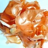 Луковая шелуха: польза и вред для организма
