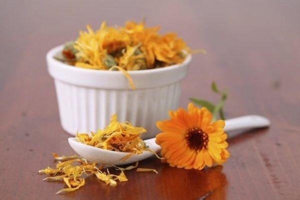 Чай из календулы: польза и вред для здоровья