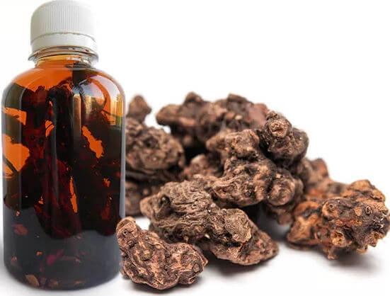 Корень калгана: лечебные свойства и противопоказания