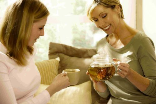 Зверобой: лечебные свойства и противопоказания