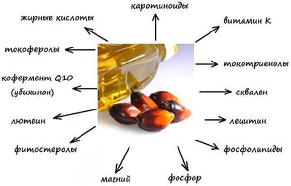 Пальмовое масло: польза и вред для организма