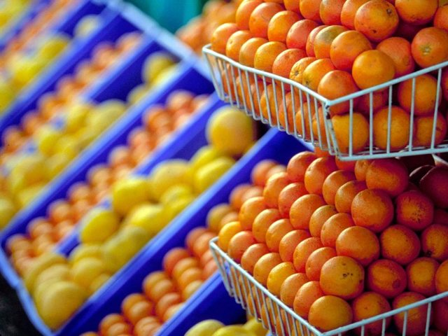 Апельсины: польза и вред для здоровья организма