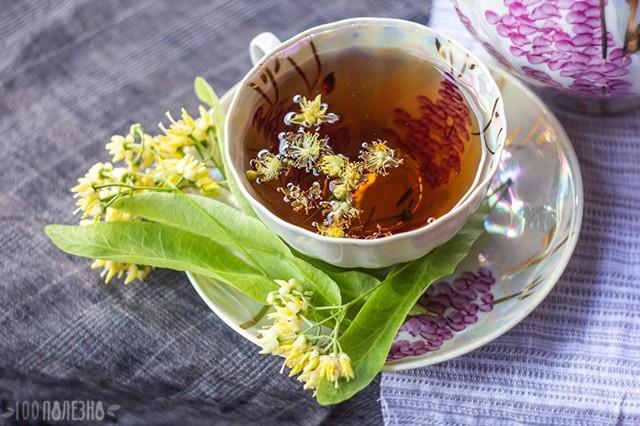 Липовый чай: польза и вред для организма