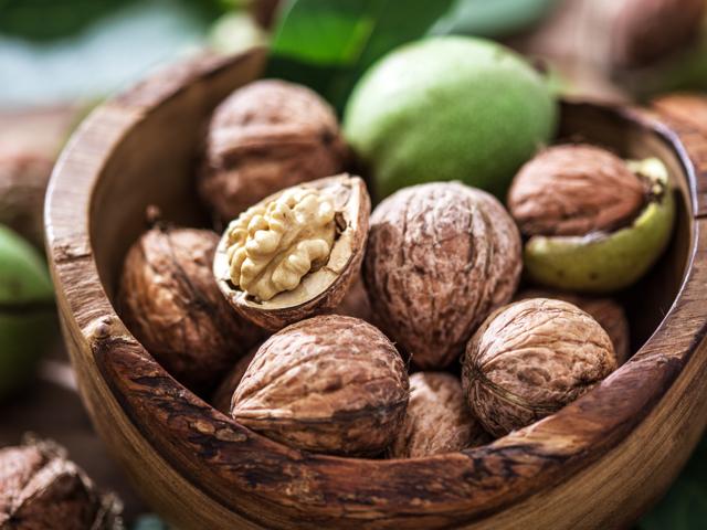 Грецкий орех: польза и вред для организма