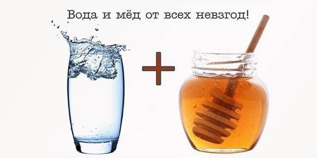 Вода с медом натощак: польза и вред