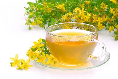 Чай из зверобоя: польза и вред для здоровья