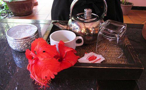 Чай каркаде: польза и вред для организма