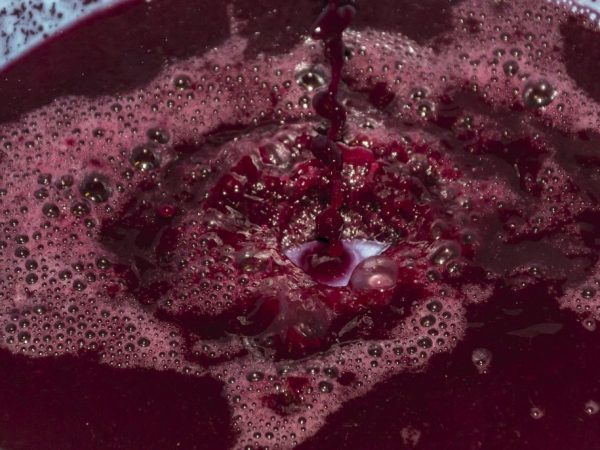 Виноградный сок: польза и вред для организма