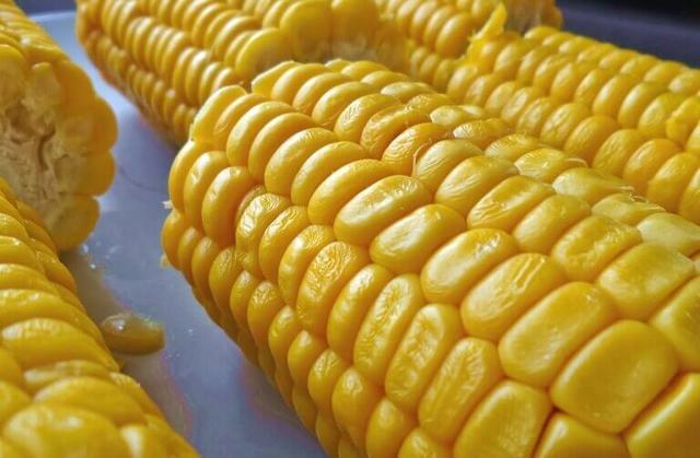 Вареная кукуруза: польза или вред для здоровья
