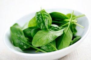 Шпинат: польза и вред для здоровья организма