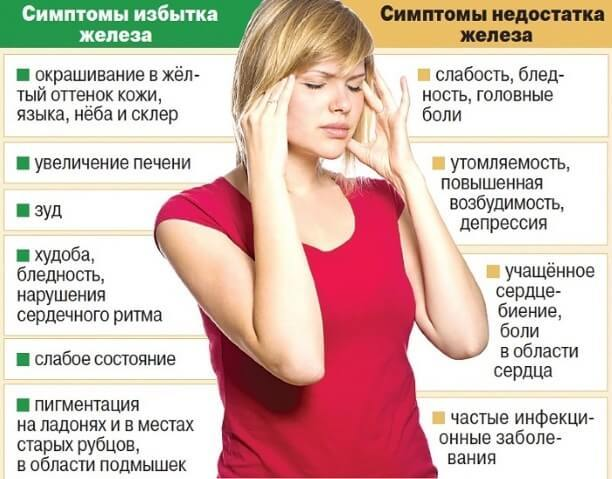 Говядина: польза и вред для организма человека