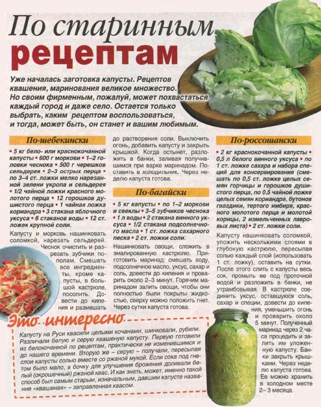 Квашеная капуста: польза и вред для организма
