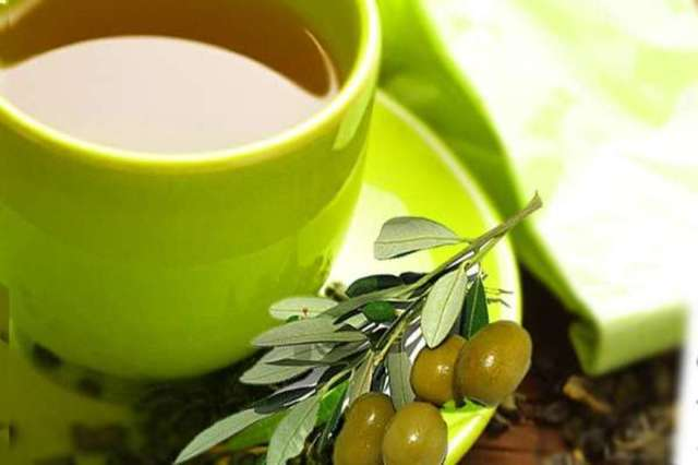 Оливки (маслины): польза и вред для организма - Польза и вред еды