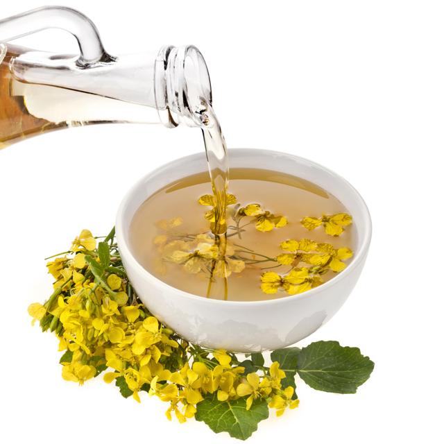 Горчичное масло польза и вред для организма