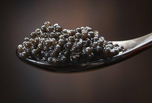 Черная икра: польза и вред для здоровья