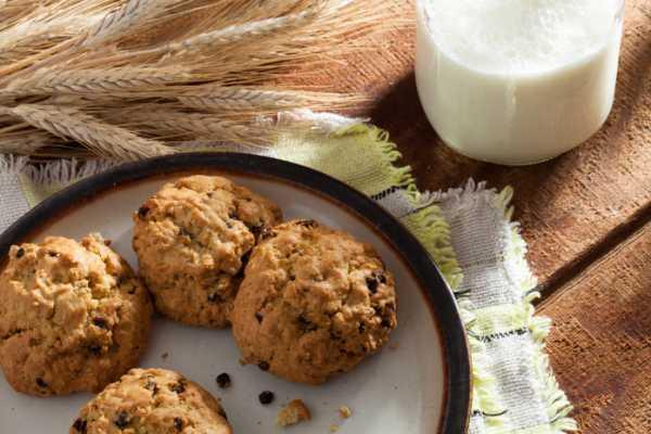 Галетное печенье: польза и вред для здоровья
