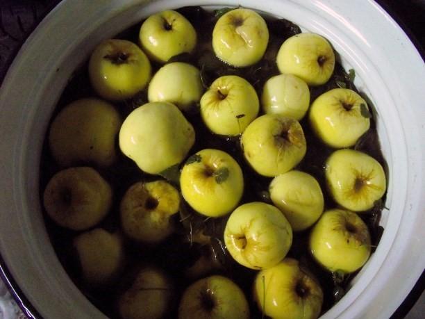 Моченые яблоки: польза и вред для здоровья